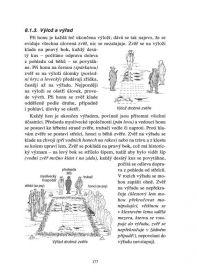 Úvod do myslivosti Druckvo