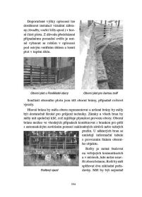 Kniha Myslivost II. Druckvo