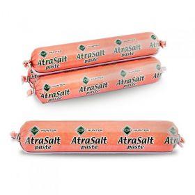 FOR AtraSalt Anýz 2,4kg (4x600g)