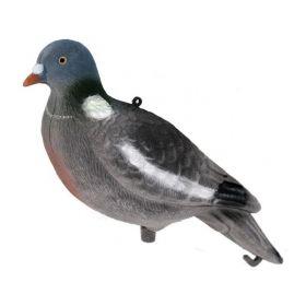 Balabán holub